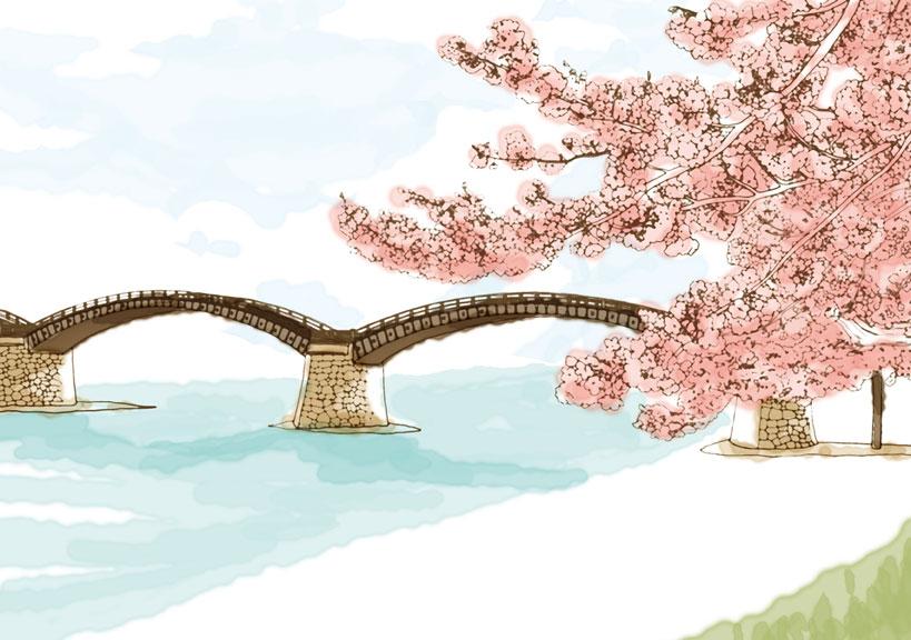 錦帯橋イラスト